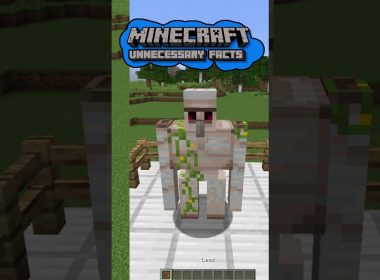 Unnecessary Minecraft Facts | Part 8 #Shorts​​